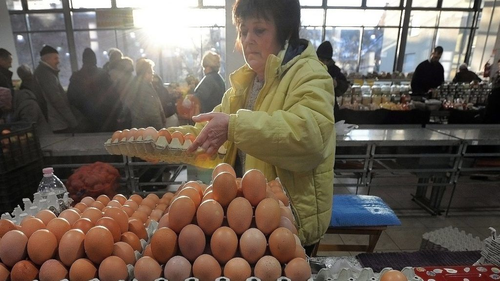 Debrecen, 2017. január 7. Nagy Sándorné halápi õstermelõ tálcás tojást rak az asztalára. Változatlan, a 2016. év végi áron kínálják a tojást a debreceni piacon. MTVA/Bizományosi: Oláh Tibor  *************************** Kedves Felhasználó! Ez a fotó nem a Duna Médiaszolgáltató Zrt./MTI által készített és kiadott fényképfelvétel, így harmadik személy által támasztott bárminemû – különösen szerzõi jogi, szomszédos jogi és személyiségi jogi – igényért a fotó készítõje közvetlenül maga áll helyt, az MTVA felelõssége e körben kizárt.