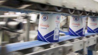 Kaposvár, 2017. január 20. Csomagolt kristálycukor egy szállítószalagon az 1. Magyar Cukor Manufaktúra üzemében Kaposváron 2017. január 20-án. MTI Fotó: Varga György