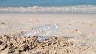 Plastic bottle on sand beach. Pollution of the beach.