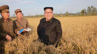 """This undated picture released from North Korea's official Korean Central News Agency (KCNA) on September 30, 2017 shows North Korean leader Kim Jong-Un (C) visiting Farm No. 1116 under Korean People's Army (KPA) Unit 810 at an undisclosed location. / AFP PHOTO / KCNA VIA KNS / STR / South Korea OUT / REPUBLIC OF KOREA OUT   ---EDITORS NOTE--- RESTRICTED TO EDITORIAL USE - MANDATORY CREDIT """"AFP PHOTO/KCNA VIA KNS"""" - NO MARKETING NO ADVERTISING CAMPAIGNS - DISTRIBUTED AS A SERVICE TO CLIENTSTHIS PICTURE WAS MADE AVAILABLE BY A THIRD PARTY. AFP CAN NOT INDEPENDENTLY VERIFY THE AUTHENTICITY, LOCATION, DATE AND CONTENT OF THIS IMAGE. THIS PHOTO IS DISTRIBUTED EXACTLY AS RECEIVED BY AFP.  /"""