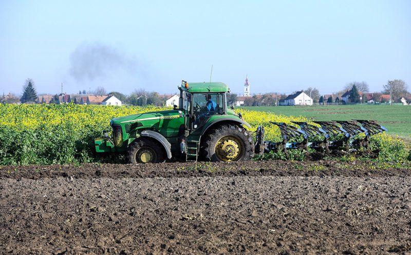 Létavértes, 2017. november 5.Augusztus közepén ökológiai másodvetésként olajretek és fehér mustár került a learatott búza helyére Létavértes határában, amit most beszántanak a talaj tápértékének és szerkezetének javítására a szántóföldi növénytermesztésben és mezőgazdasági szolgáltatásban vállalkozó Léta 50 Kft.-ben. A beszántott zöld trágyát 5 fejes váltó ekével forgatják a talajba.MTVA/Bizományosi: Oláh Tibor ***************************Kedves Felhasználó!Ez a fotó nem a Duna Médiaszolgáltató Zrt./MTI által készített és kiadott fényképfelvétel, így harmadik személy által támasztott bárminemű – különösen szerzői jogi, szomszédos jogi és személyiségi jogi – igényért a fotó készítője közvetlenül maga áll helyt, az MTVA felelőssége e körben kizárt.