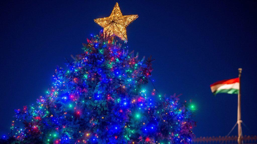 Budapest, 2017. december 1. Az ország karácsonyfája az Országház elõtti Kossuth Lajos téren 2017. december 1-jén. MTI Fotó: Balogh Zoltán