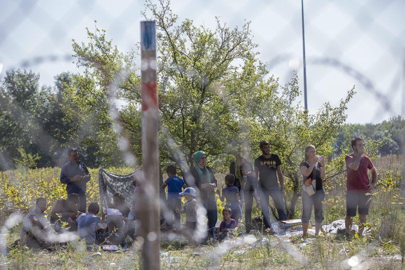 Röszke, 2015. szeptember 18.Migránsok várakoznak a röszkei határátkelőnél kialakított áteresztési pontnál 2015. szeptember 18-án.MTI Fotó: Rosta Tibor