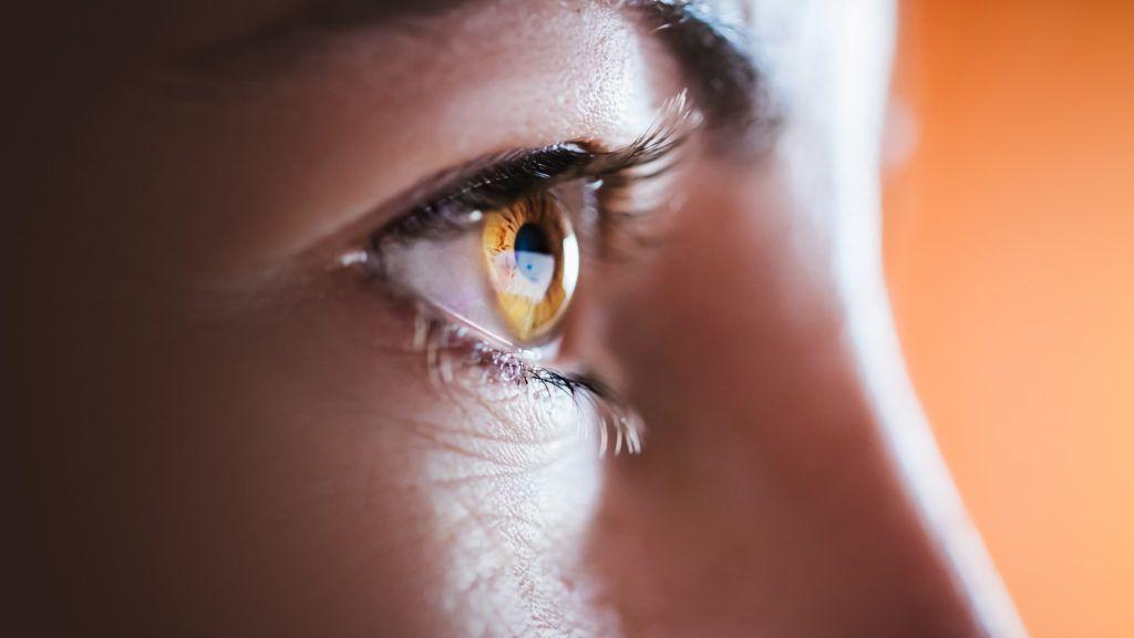 Woman brown eye with long eyelashes