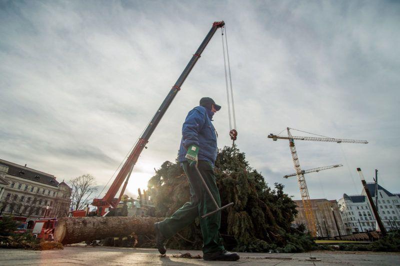 Budapest, 2018. január 9.Szakemberek bontják az ország karácsonyfáját az Országház előtt 2018. január 9-én. A fenyőfa feldarabolása után a faanyagot nagycsaládos tűzoltók között osztják szét.MTI Fotó: Balogh Zoltán