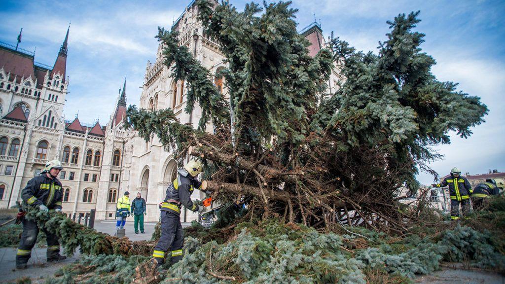Budapest, 2018. január 9.Tűzoltók darabolják fel az ország karácsonyfáját az Országház előtt 2018. január 9-én. A fenyőfa feldarabolása után a faanyagot nagycsaládos tűzoltók között osztják szét.MTI Fotó: Balogh Zoltán
