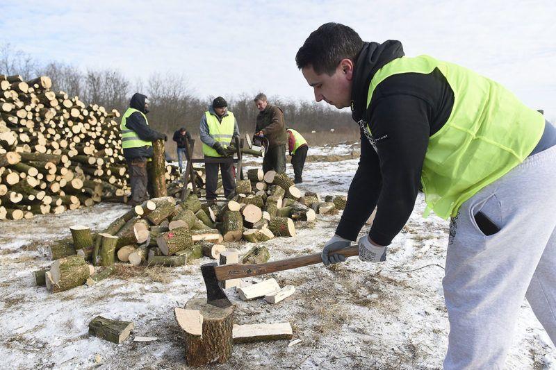 Dány, 2017. január 11.Közmunkások aprítják fel a Belügyminisztérium által meghirdetett tüzelőanyag-pályázat keretében elnyert támogatásból vásárolt tűzifát Dányban 2017. január 11-én. A minisztérium saját keretéből biztosít tüzelőanyag-támogatást az ötezer lakos alatti településeken élő rászorulóknak, a pályázat 180 ezer embernek jelent segítséget.MTI Fotó: Kovács Tamás