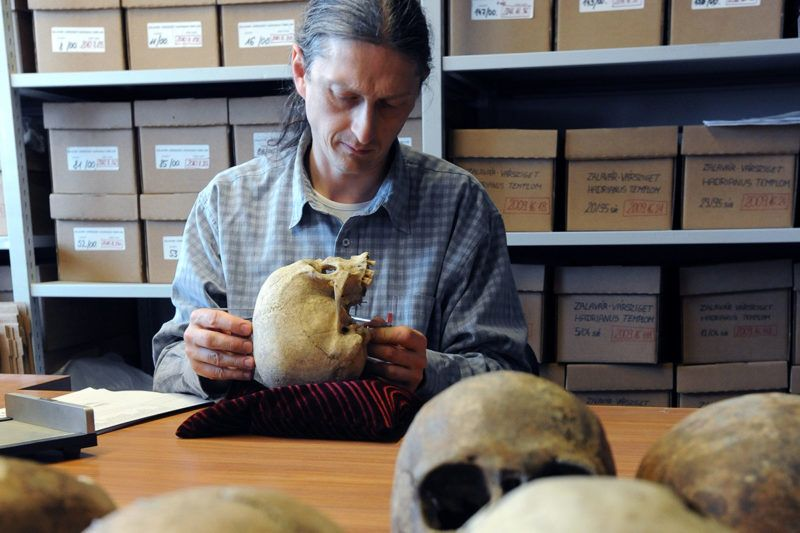 Budapest, 2011. március 25.Bernert Zsolt antropológus koponyákat vizsgál a múzeum Ludovika épületében lévő embertani tárában. A kormány 1994-ben döntött a Magyar Természettudományi Múzeum új elhelyezéséről. A rekonstrukció során a Ludovika Akadémia 1836-ban épült klasszicista épületében helyezték el az ásvány- és kőzettárat, az embertani tárat, a föld és őslénytani tárat, az állattár gyűjteményeit. Ezután került sor a teljes rekonstrukcióra, így mostanra a múzeum már készen áll az érdekes, izgalmas kiállítások bemutatására és a vendégek fogadására.MTI Fotó: Manek Attila