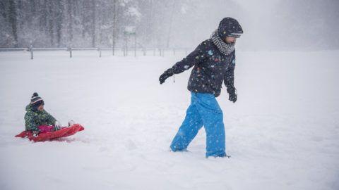 Pécs, 2018. február 3. Szánkózók a Mecsekben, a Remeteréten Pécs közelében 2018. február 3-án. A havazás veszélye miatt a fél országra elsõ fokú figyelmeztetést adott ki az Országos Meteorológiai Szolgálat. MTI Fotó: Sóki Tamás