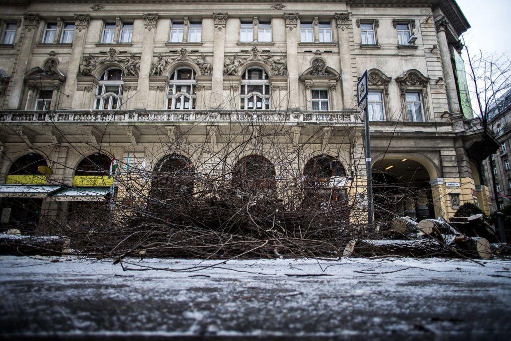 Fotó:24.hu/Karancsi Rudolf