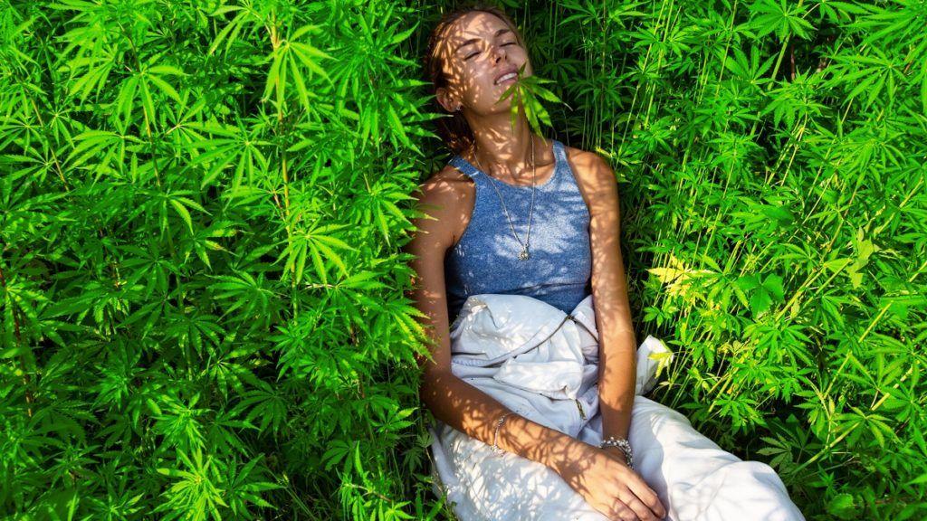 Happy young girl in a bush marijuana