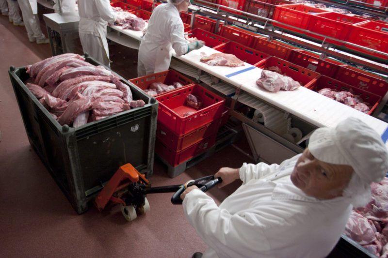 Kaposvár, 2011. október 25. Egy munkás hússal teli konténert húz a csontozó részlegben, a Kométa 99 Zrt. kaposvári telephelyén. MTI Fotó: Varga György