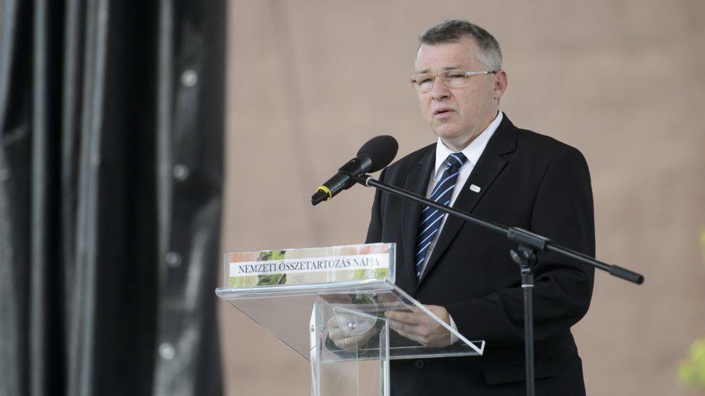 Hatvan, 2015. június 4. Szabó Zsolt fejlesztés- és klímapolitikáért, valamint kiemelt közszolgáltatásokért felelõs államtitkár, a térség fideszes országgyûlési képviselõje beszédet mond a nemzeti összetartozás napja alkalmából Elveszett kézszorítás... címmel tartott városi megemlékezésen Hatvanban 2015. június 4-én. MTI Fotó: Komka Péter