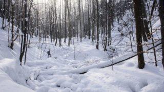 Parádfürdő, 2018. február 28.Behavazott erdő az Ilona-völgyben, Parádfürdő közelében 2018. február 28-án.MTI Fotó: Komka Péter