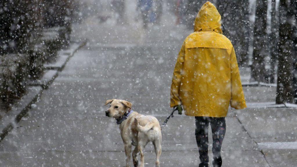 Hoboken, 2018. március 7. Hóviharban sétáltat kutyát egy nõ a New Jersey állambeli Hobokenben 2018. március 7-én. (MTI/AP/Seth Wenig)