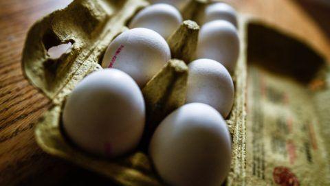 Drezda, 2017. augusztus 4. Egy rekesz tyúktojás a németországi Drezdában 2017. augusztus 4-én. Az Aldi német üzletlánc bejelentette, hogy óvintézkedés gyanánt kivonja a forgalomból az összes németországi áruházában forgalmazott tojást a Hollandiában rovarirtóval szennyezett tojások miatt kitört botrány miatt. (MTI/EPA/Filip Singer)