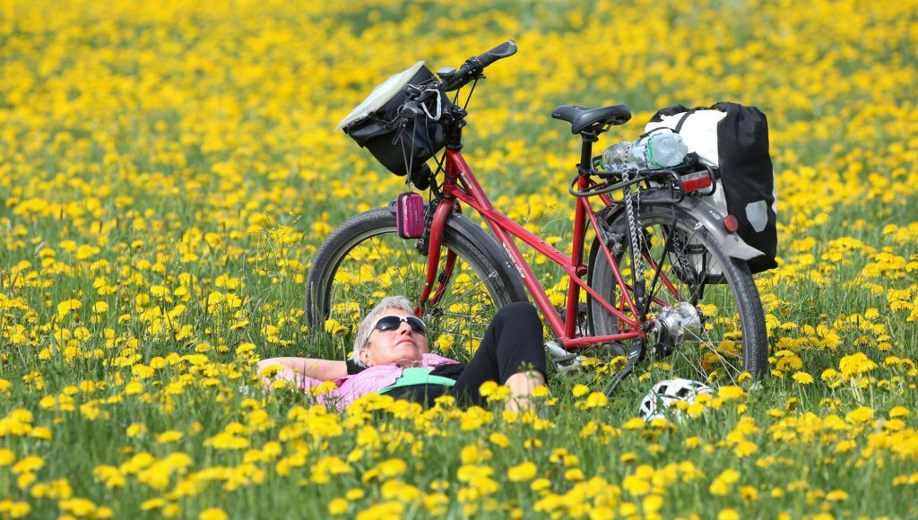 A rider rests next to her bicycle in a field of dandelion flowers on April 23, 2018 in Riedlingen, southern Germany. / AFP PHOTO / dpa / Thomas Warnack / Germany OUT