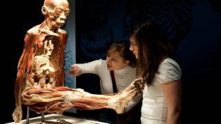 Budapest, 2012. április 2.Érdeklődők egy emberi test preparátumát nézik a Bodies Revealed (Feltárt testek) elnevezésű tárlaton a VAM Design Centerben, ahol 1700 m2-en, 9 teremben, kilenc furgonnal érkezett 15 testet és több mint 200 testrészt, egészséges és beteg szervet nézhetnek meg a látogatók. A Bodies2 kiállítás az ismeretterjesztésre és az oktatásra helyezte a hangsúlyt, arra világít rá, hogy az egészségtelen életmódnak milyen következményei vannak az emberi testben.MTI Fotó: Kallos Bea
