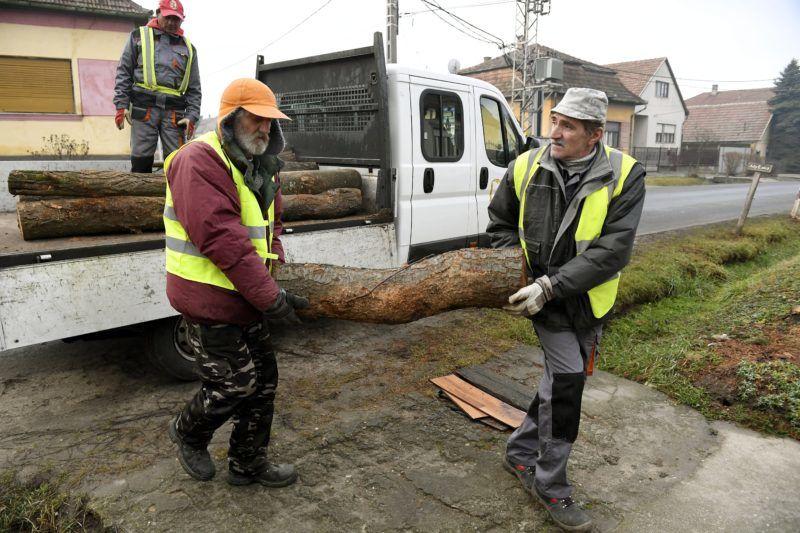Galgahévíz, 2018. január 9. Rönkfát rakodnak le egy teherautóról az országos szociális tüzelõanyag-programban egy galgahévízi háznál 2018. január 9-én. MTI Fotó: Koszticsák Szilárd