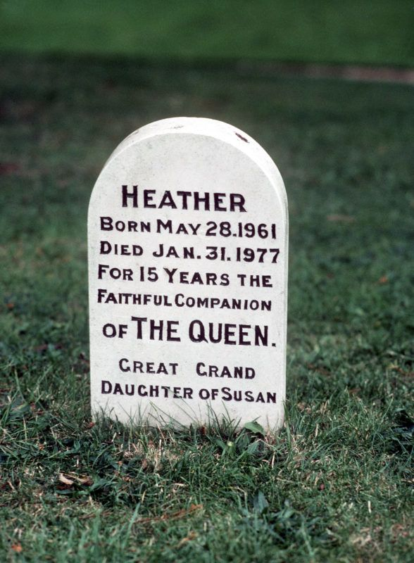 SANDRINGHAM:  The grave of Queen Elizabeth II's dog, Heather, at Sandringham. (Photo by Anwar Hussein/Getty Images)