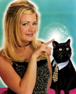 Sabrina the teenage witch TV show