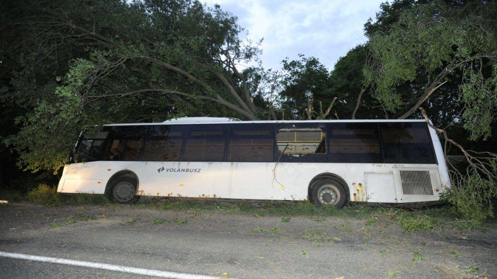 Zsámbék, 2018. május 9. Árokba borult menetrend szerinti autóbusz a Zsámbékot és Pátyot összekötõ út mellett 2018. május 9-én. A balesetben tizenegyen megsérültek. MTI Fotó: Mihádák Zoltán