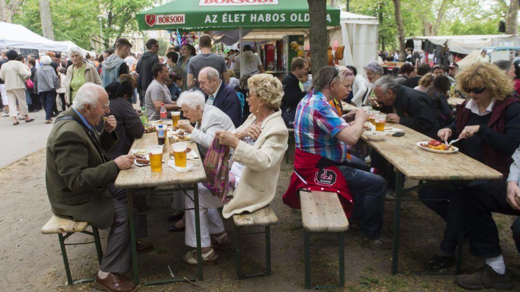 Budapest, 2015. május 1. Résztvevõk az MSZP majálisán a Városligetben 2015. május 1-jén. MTI Fotó: Illyés Tibor