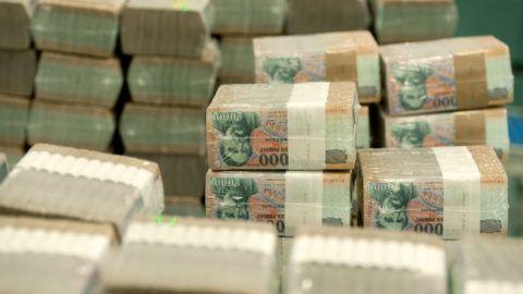 Budapest, 2012. február 7.Húszezer forintos bankjegytömbök a Magyar Nemzeti Bank (MNB) Logisztikai Központjában, ahol automata rendszeren átválogatják és ellenőrzik a papírpénzeket, majd a selejteket bedarálják és téglává préselik. A 3-4 hét alatt összegyűlt mintegy 4 tonna pénzbrikettet pályázat alapján rászoruló, közhasznú szervezetek számára ajánlják fel fűtési célra. A mostani szállítmányt a miskolci autista alapítvány bentlakásos intézményébe szállítják.MTI Fotó: Koszticsák Szilárd