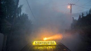 Pécs, 2017. június 28. Szúnyogirtás ködképzõ generátorral Pécsett 2017. június 29-én. MTI Fotó: Sóki Tamás