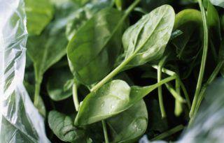 tetragone spinach