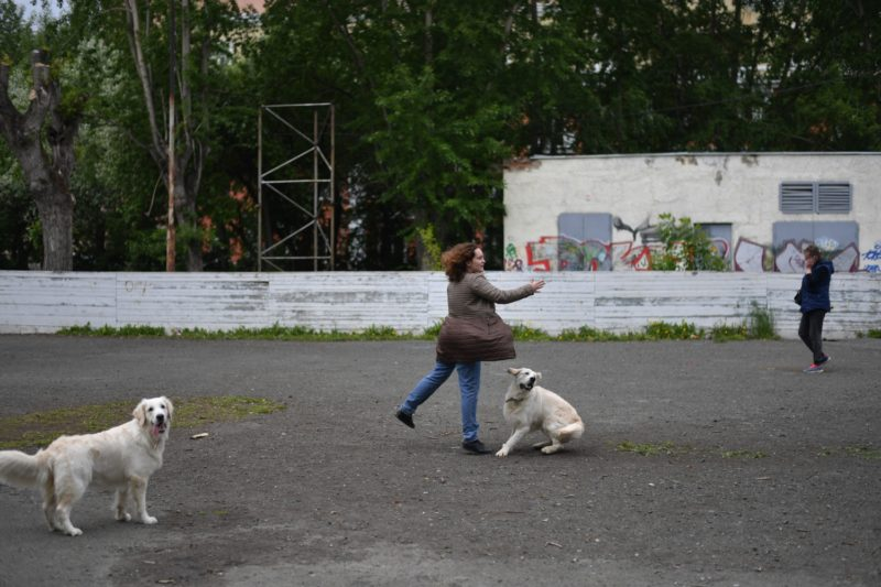 A woman plays with a dog in a park in the district of Uralmash, in Ekaterinburg  on June 18, 2018, during the Russia 2018 World Cup football tournament. / AFP PHOTO / HECTOR RETAMAL