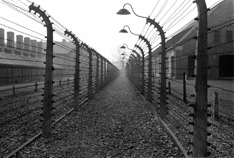 Guerre 1939-1945. Camp allemand d'extermination d'Auschwitz. Les barbelés.     RV-759436