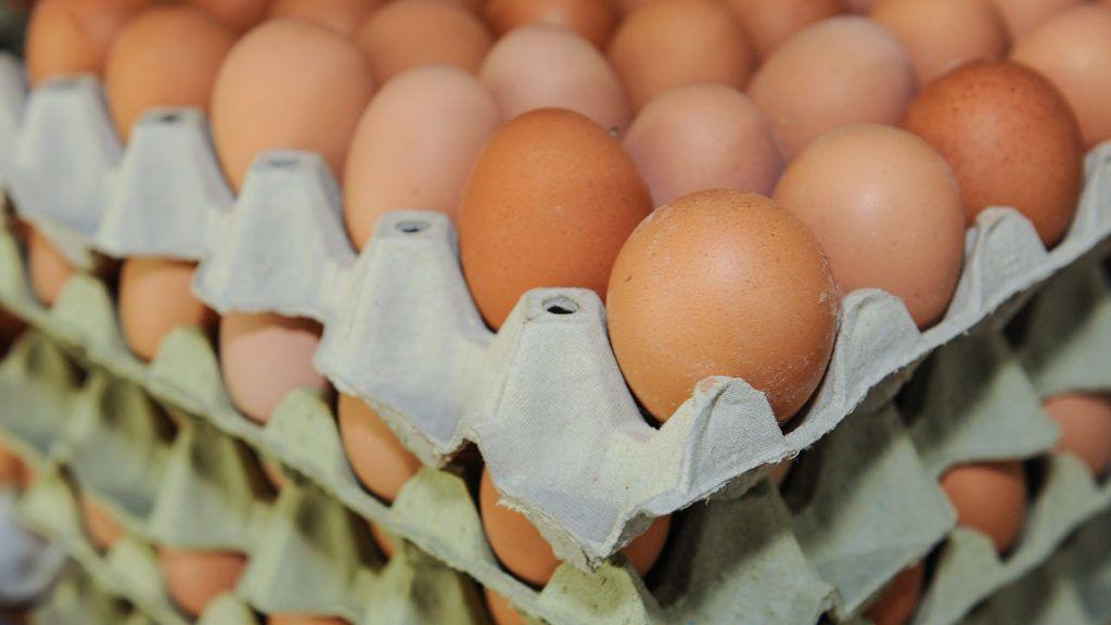 Földes, 2018. június 4. Szállításhoz elõkészített rekeszes tojások. A Földesi Rákóczi Mezõgazdasági Kft. baromfi ágazatában évente 44 millió darab tojást állítanak elõ, amelynek 50 százalékát áruházláncokban, a fennmaradó hányadot pedig piacokon, boltokban és cukrászdák számára értékesítik S, M, L, XL méret szerint válogatva. MTVA/Bizományosi: Oláh Tibor  *************************** Kedves Felhasználó! Ez a fotó nem a Duna Médiaszolgáltató Zrt./MTI által készített és kiadott fényképfelvétel, így harmadik személy által támasztott bárminemû – különösen szerzõi jogi, szomszédos jogi és személyiségi jogi – igényért a fotó készítõje közvetlenül maga áll helyt, az MTVA felelõssége e körben kizárt.