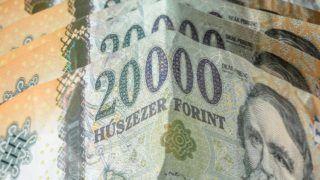 Budapest, 2016. szeptember 10. Az újfajta húszezer forintos bankjegyek részlete. Magyarország ma is hivatalos fizetõeszközét, a forintot, 70 évvel ezelõtt, 1946. augusztus elsején vezették be. A pengõt felváltó új pénz nevét I. Károly történelmi aranyforintjáról kapta.  MTVA/Bizományosi: Faludi Imre  *************************** Kedves Felhasználó! Ez a fotó nem a Duna Médiaszolgáltató Zrt./MTI által készített és kiadott fényképfelvétel, így harmadik személy által támasztott bárminemû – különösen szerzõi jogi, szomszédos jogi és személyiségi jogi – igényért a fotó készítõje közvetlenül maga áll helyt, az MTVA felelõssége e körben kizárt.