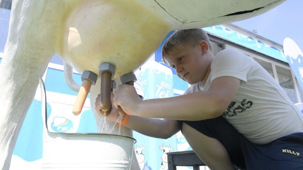 Budapest, 2018. június 1. A tehénfejést gyakorolja egy gyerek egy életnagyságú, tehenet mintázó oktatóeszköz segítségével a tej világnapja alkalmából rendezett, tejfogyasztást népszerûsítõ rendezvényen egy fõvárosi szórakozóhelyen 2018. június 1-jén. A rendezvényt a Tej Szakmaközi Szervezet és Terméktanács, az Agrárminisztérium és az Agrármarketing Centrum szervezte. MTI Fotó: Kovács Tamás