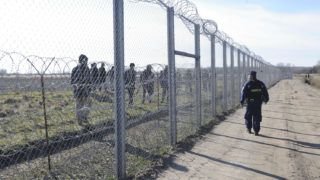 Mórahalom, 2016. február 22.Magyar rendőr figyeli a vajdasági oldalon tartózkodó migránsokat a magyar-szerb határon felállított ideiglenes határzárnál, Mórahalom térségében 2016. február 22-én. A hétvégén 501 határsértőt fogtak el a rendőrök.MTI Fotó: Kelemen Zoltán Gergely