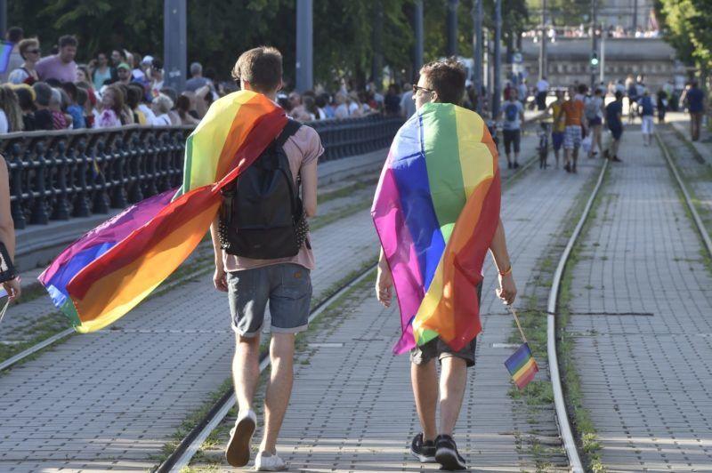 Budapest, 2017. július 8. Az LMBTQ-közösség (leszbikus, meleg, biszexuális, transznemû és queer emberek) fesztiválja, a 22. Budapest Pride felvonulásának résztvevõi a Várkert Bazár elõtt 2017. július 8-án. MTI Fotó: Máthé Zoltán