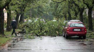 Gorzów Wielkopolski, 2017. október 6. A Xavier elnevezésû viharban lehasadt faágak elzárnak egy autóutat a nyugat-lengyelországi Gorzów Wielkopolskiban 2017. október 6-án. Az elõzõ éjjeli viharban ketten meghaltak és harminckilencen megsérültek, a térségben közel 840 ezer háztartás maradt áram nélkül. (MTI/EPA/Lech Muszynski)