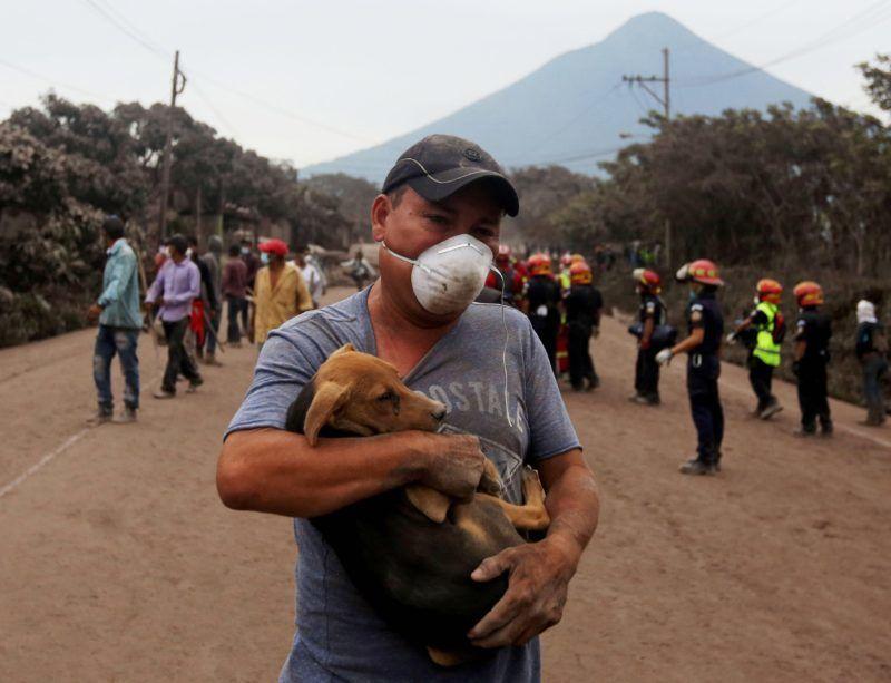 Escuintla, 2018. június 4. Kutyát visz ölben egy légzõmaszkot viselõ férfi a dél-guatemalai Escuintlában 2018. június 4-én, a közeli Fuego tûzhányó kitörésének másnapján. A természeti katasztrófában legkevesebb huszonöten életüket vesztették, mintegy háromszázan égési sérüléseket szenvedtek, és többen eltûntek. (MTI/EPA/Esteban Biba)