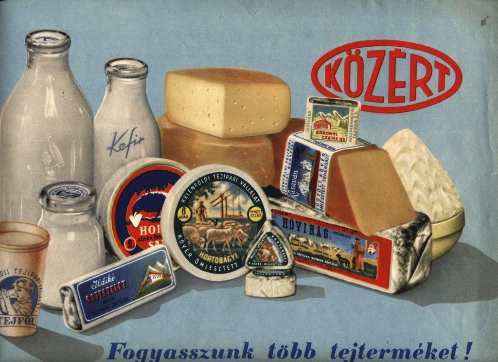 FőnÈzet - Fogyasszunk tˆbb tejtermÈket felirat˙ K÷Z…RT rekl·mlap. A kÈpen a K÷Z…RT ¸zletekben kaphatÛ tejtermÈkek l·thatÛak: sajtok, tejfˆl, ¸vegekben tej Ès kefir.