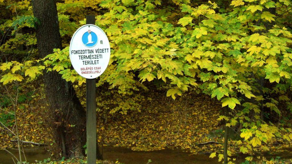 Szilvásvárad, 2011. november 1. Fokozottan védett természeti területre hívja fel az arra járók figyelmét a jelzõtábla a Szalajka-patak völgyében, a sárguló erdõ szélén. MTI/Bizományosi: Jászai Csaba  *************************** Kedves Felhasználó! Az Ön által most kiválasztott fénykép nem képezi az MTI fotókiadásának és archívumának szerves részét. A kép tartalmáért és a szövegért a fotó készítõje vállalja a felelõsséget.