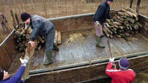 Ömböly, 2009. február 3.Munkások fát rakodnak le egy traktor pótkocsijáról Ömbölyön, ahol hatvan köbméter tűzifát osztottak szét a falu családjai között. Szabolcs-Szatmár-Bereg és Hajdú-Bihar megyében a Nyírségi Erdészeti (Nyírerdő) Zrt. összesen hatezer köbméter tűzifát oszt szét az arra rászorulóknak. A társaság a szociális akcióval ahhoz kíván hozzájárulni, hogy ne következhessen be újabb fagyhalál fűtetlen lakásokban a térségben, ahol eddig csak Szabolcsban 16-an vesztették életüket kihűlés miatt az idei télen.MTI Fotó: Oláh Tibor