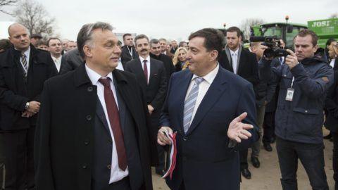 Alcsútdoboz, 2014. november 18. Orbán Viktor miniszterelnök és Mészáros Lõrinc (Fidesz-KDNP) felcsúti polgármester (középen, b-j) beszélget a Búzakalász 66 Felcsút Kft. bányavölgyi mangalicatelepének avatásán a Fejér megyei Alcsútdobozon 2014. november 18-án. Mögöttük Tessely Zoltán fideszes országgyûlési képviselõ. MTI Fotó: Koszticsák Szilárd