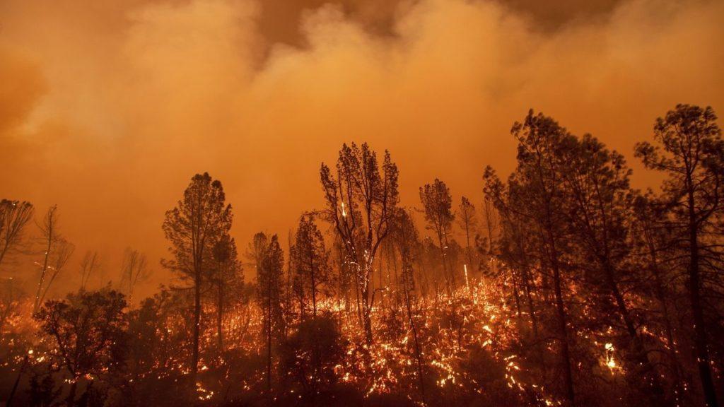 Redding, 2018. július 27. Lángol a növényzet a kaliforniai erdõtüzek sújtotta Reddingben 2018. július 26-án. A két hete pusztító tûz a San Franciscótól 300 kilométerre, keletre fekvõ El Portal település térségében, a Sierra Nevada hegységben ütötte fel a fejét. Az oltást a száraz, meleg idõ nehezíti. (MTI/AP/Noah Berger)