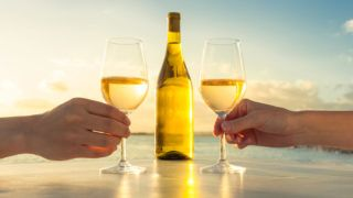 Couple enjoying glass of wine by the sea.