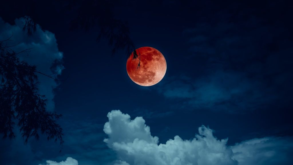 Beautiful landscape view on seascape to night. Attractive red full moon or blood moon on dark blue sky with cloudy. Serenity nature background, outdoors at nighttime. The moon taken with my own camera.