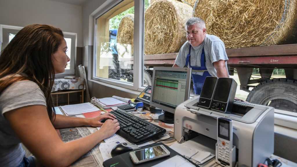 Hajdúnánás, 2018. július 17. Kakócz Zsolt a mázsaházhoz érkezik bála szállítmányával, aminek adatait Ráti Renáta számítógépre rögzít. A hajdúnánási Nyakas Farmon véget ért a búza betakarítása. A vetett 180 hektáron ebben az évben 60-70 mázsás hektáronkénti átlagtermés született malmi minõségben.  MTVA/Bizományosi: Oláh Tibor  *************************** Kedves Felhasználó! Ez a fotó nem a Duna Médiaszolgáltató Zrt./MTI által készített és kiadott fényképfelvétel, így harmadik személy által támasztott bárminemû – különösen szerzõi jogi, szomszédos jogi és személyiségi jogi – igényért a fotó készítõje közvetlenül maga áll helyt, az MTVA felelõssége e körben kizárt.