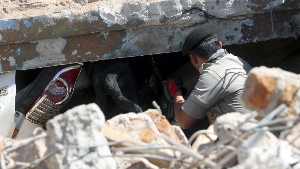 Tanjung, 2018. augusztus 8. Keresõkutyákkal kutatnak túlélõk után egy összedõlt épület romjai között az indonéziai Lombok szigetének északi részén levõ Tanjungban 2018. augusztus 8-án. A három nappal ezelõtti 7-es erõsségû földmozgásban, amelynek epicentrumát Lombok-szigeten mérték 10,5 kilométeres mélységben, legkevesebb 142 ember életét vesztette. (MTI/EPA/Adi Weda)