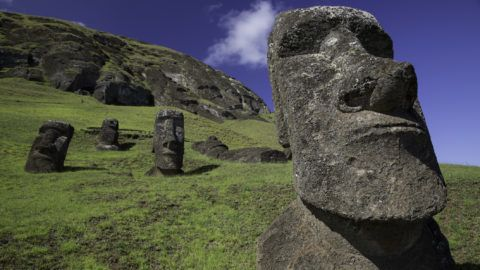 A highly detailed image of a moai at Rano Raraku, birthplace of the Easter Island moai.  Excellent lighting and texture.