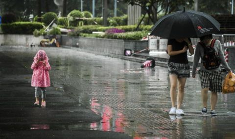 A young girl dressed in a raincoat walks past pedestrians shielding themselves with an umbrella and braving strong wind and heavy rain caused by Typhoon Mangkhut, the 22nd typhoon of the year, on a street in Guangzhou city, south China's Guangdong province, 16 September 2018.  China's national observatory on Sunday (16 September 2018) renewed a red alert for Typhoon Mangkhut. Mangkhut is expected to land in the coastal areas between Zhuhai and Wuchuan of south China's Guangdong Province on Sunday afternoon or evening, the National Meteorological Center said. After the landfall, the typhoon will continue to move northwest, but its force will dwindle. The eye of the typhoon was located on the South China Sea about 420 kilometers to the southeast of Taishan City, Guangdong, as of 5:00 a.m. Sunday, according to the center. Southern regions including the provinces of Guangdong, Fujian and Hainan will be hit by gales and storms on Sunday and Monday, the center said.